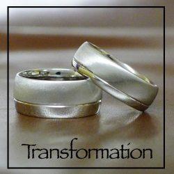 vignettes_transformation
